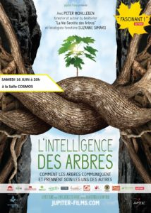 Film L'intelligence des arbres